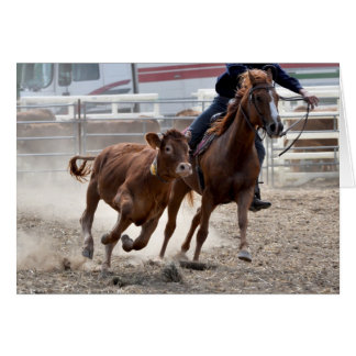 Calf cutting horse birthday card