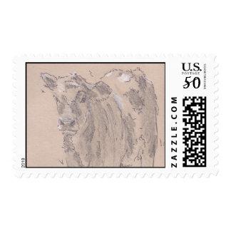 Calf drawing postage