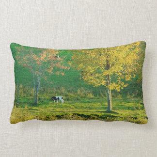 Calf in A Maine Farm Field, Fall Throw Pillows