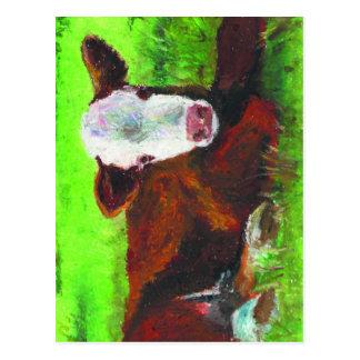 calf postcard
