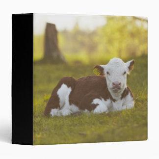 Calf resting in rural landscape 3 ring binder