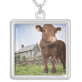 Calf standing in meadow silver plated necklace
