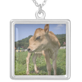 Calf standing square pendant necklace