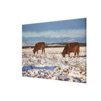 calgary, alberta, canada 2 canvas print