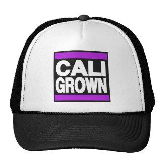 Cali crecido púrpura gorros bordados
