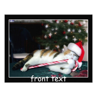 Cali el gato del navidad del calicó