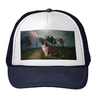 Cali Moon Mesh Hats