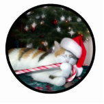 Cali the Calico Christmas Cat Acrylic Cut Out