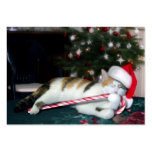 Cali the Calico Christmas Cat Business Card Templates