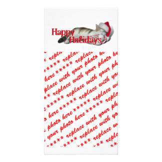 Cali the Calico Christmas Cat (With Text) Customized Photo Card
