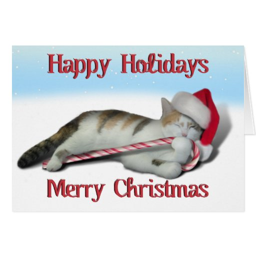 Cali, the Candy Cane Kitty Greeting Card