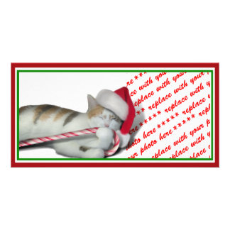Cali, the Christmas Candy Cane Kitty Photo Cards