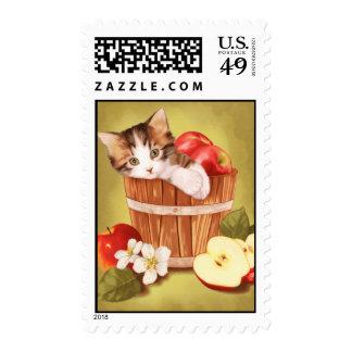 Calico apple kitten postage stamp