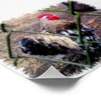 Calico Bantam Cochin Rooster Painting Print