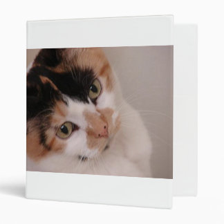 Calico Beauty 3 Ring Binder