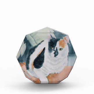 Calico Cat Acrylic Award