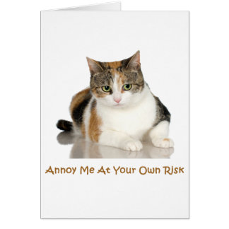 Calico Cat: Annoy Me At Your Own Risk Card