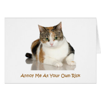 Calico Cat: Annoy Me At Your Own Risk Greeting Card