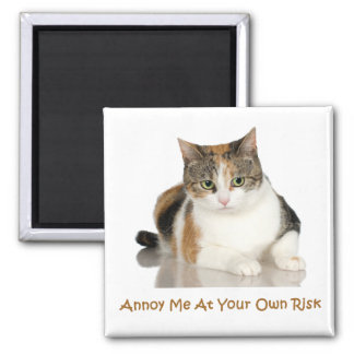 Calico Cat: Annoy Me At Your Own Risk 2 Inch Square Magnet