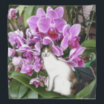 """Calico Cat Bandana<br><div class=""""desc"""">A calico cat with orchids for a background decorates this beautiful bandana</div>"""