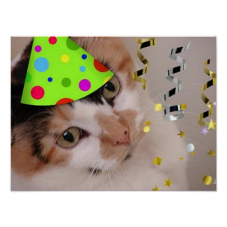 Calico Cat Birthday Party Poster