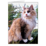 Calico Cat Custom Thinking Of You Stationery Note Card