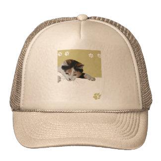 Calico Cat Trucker Hat