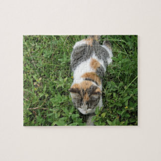 Calico Cat Jigsaw Puzzles