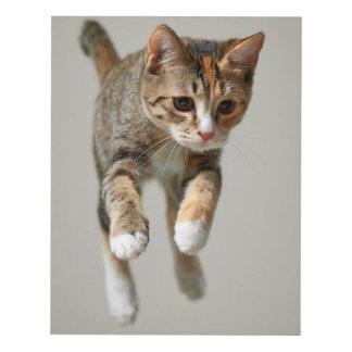 Calico Cat Jumping Panel Wall Art