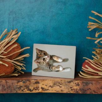 Calico Cat Jumping Plaque