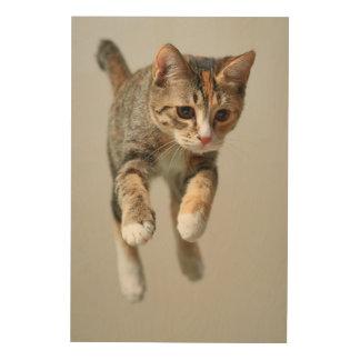 Calico Cat Jumping Wood Wall Decor