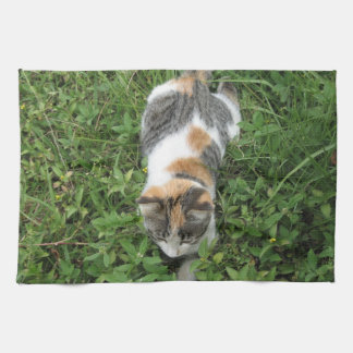 Calico Cat Kitchen Towels