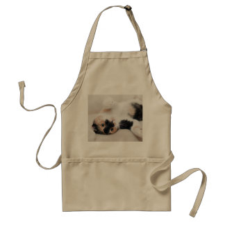 Calico Cat Laying on his back with paws up Adult Apron