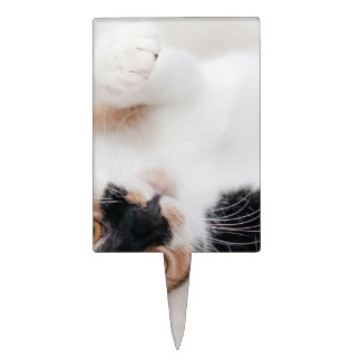 Calico Cat Laying on his back with paws up Cake Topper