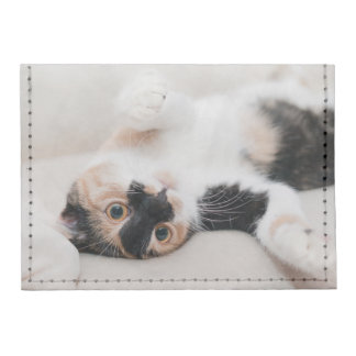 Calico Cat Laying on his back with paws up Card Wallet