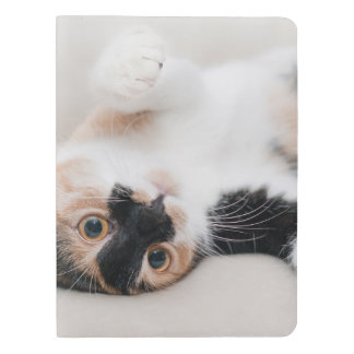 Calico Cat Laying on his back with paws up Extra Large Moleskine Notebook