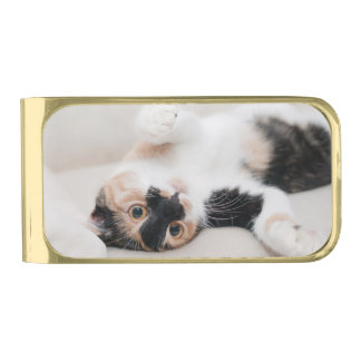 Calico Cat Laying on his back with paws up Gold Finish Money Clip