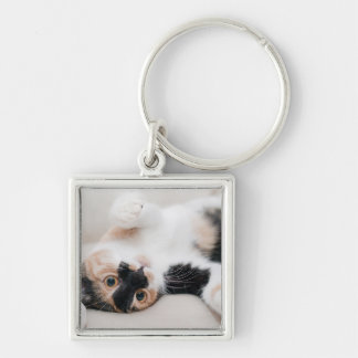 Calico Cat Laying on his back with paws up Keychain