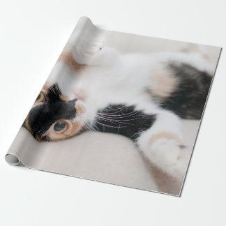 Calico Cat Laying on his back with paws up Wrapping Paper