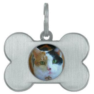 Calico Cat Pet Name Tag