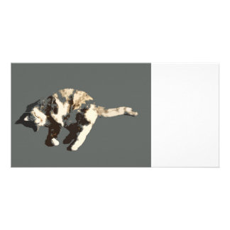 calico cat posterized grey back on side.jpg photo cards