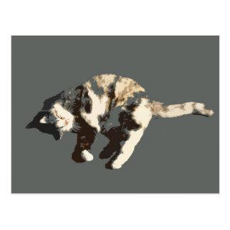 calico cat posterized grey back on side.jpg postcard