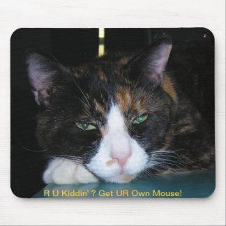 Calico Cat, R U Kiddin' ? Mousepad