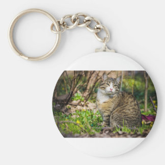 Calico Cat Roams Outside Keychain