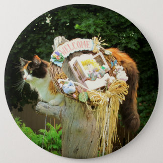 Calico Cat says Welcome Pinback Button
