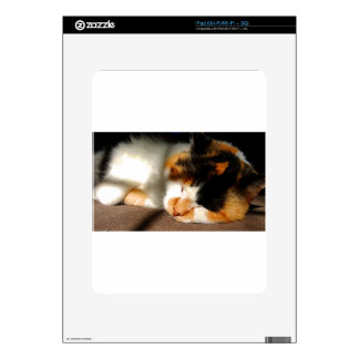 Calico Cat Sunning Decal For The iPad