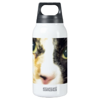 Calico cat thermos bottle