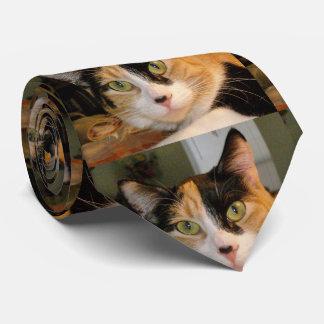 Calico Cat Tie