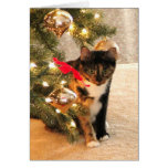 Calico Cat Under the Christmas Tree, blank inside Card