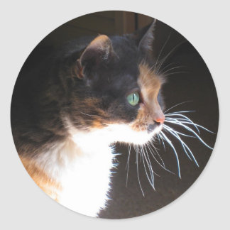 Calico Cat Whiskers Classic Round Sticker